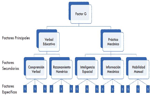 Factor G y Jerarquía de los Factores - Vernon