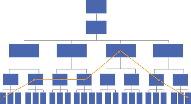Procesos y estructura jerárquico-funcional